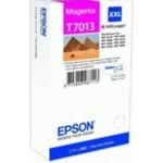 Epson T7013 C13T70134010