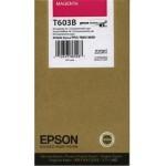 Epson T603B C13T603B00