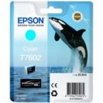 Epson T7602 C13T76024010