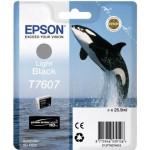 Epson T7607 C13T76074010