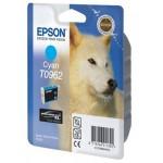 Epson T0962 C13T09624010